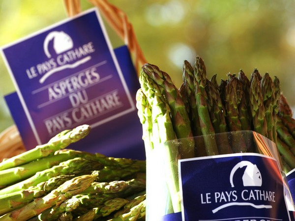 ASPERGE DU PC ©© C. DESCHAMPS - CA 11