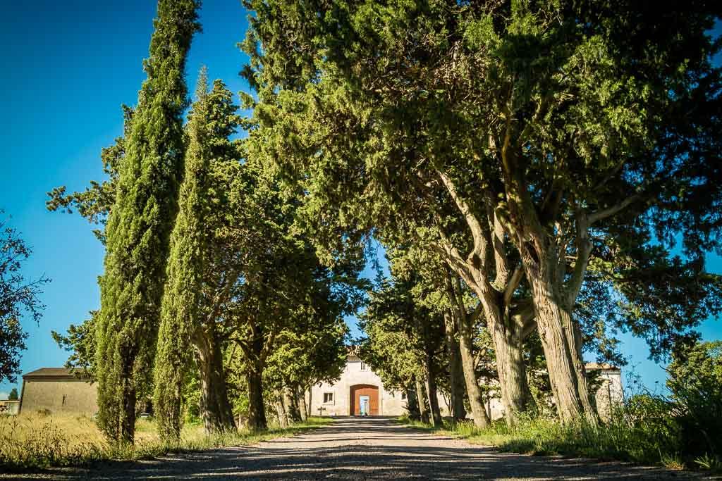 Chateau Saint Jacques d'Albas-Laure Minervois_4 ©Sud de France Développement